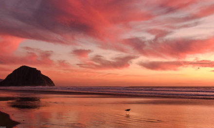 Morro Bay Named Most Beautiful Small City